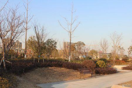 苏高新天城花园