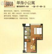 克拉公馆1室1厅1卫43平方米户型图