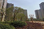 浙海商业广场外景图