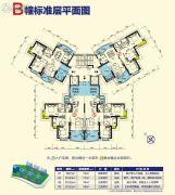 台山昌大昌广场3室2厅2卫97--123平方米户型图