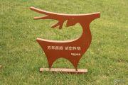 国祯广场实景图