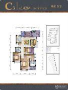 国贸仁皇4室2厅2卫142平方米户型图