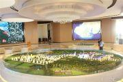 中信国安北海第一城沙盘图