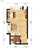 东都国际1室1厅1卫46平方米户型图