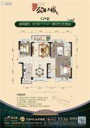 碧桂园太东公园上城3室2厅2卫109--111平方米户型图