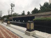 信合・湖东春天外景图