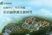 广垦铜锣湖新城规划图