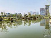西溪永乐城实景图