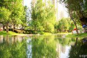 恒大滨河左岸实景图