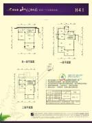 碧桂园山水桃园231平方米户型图