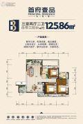 首府壹品3室2厅2卫125平方米户型图