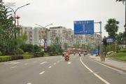 锦亭心街交通图