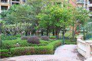 海骏达花园实景图