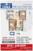 江泰春岸2室2厅1卫95平方米户型图