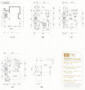 碧桂园御湖城5室4厅6卫660平方米户型图
