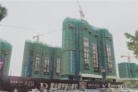 碧桂园保利・天启