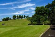 九宾・湿地外景图