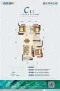 蓝光林肯公园3室2厅2卫113平方米户型图