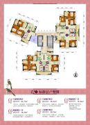 金帝世纪城76--98平方米户型图