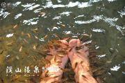 溪山温泉旅游度假村实景图