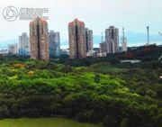 华侨城新天鹅堡实景图