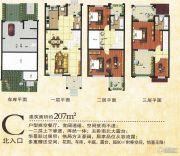 金色威尼斯207平方米户型图