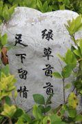 扬子・玉龙湾实景图