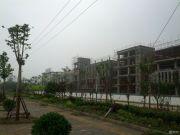 绿地国宝21城外景图