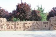 紫薇公园时光外景图