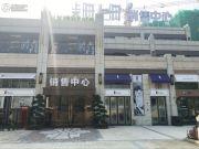 上实海上海实景图