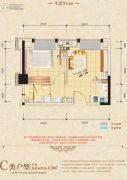 中海国际社区1室1厅1卫43平方米户型图