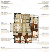 洛城中央御景4室2厅4卫253--256平方米户型图