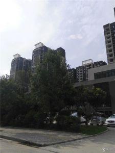 长葛建业桂园