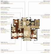 洛城中央御景3室2厅3卫174平方米户型图