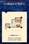 恒大御景半岛1室1厅1卫69平方米户型图