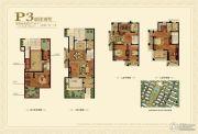 金桥花园5室3厅3卫247平方米户型图