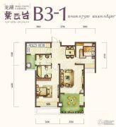 龙湖紫云台2室2厅2卫84平方米户型图