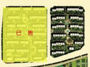 金科廊桥水岸规划图