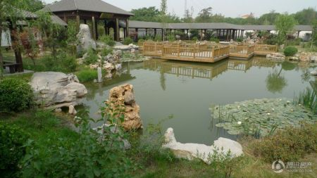 碧桂园龙城