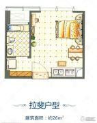 城泰凡尔赛宫1室1厅1卫26平方米户型图