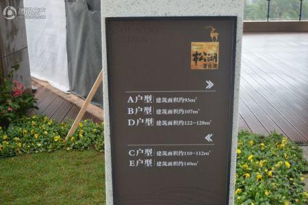 松湖碧桂园