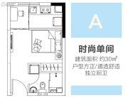 涌鑫八达通广场1室1厅1卫30平方米户型图
