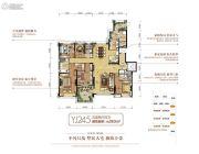 碧桂园银河城5室2厅4卫283平方米户型图