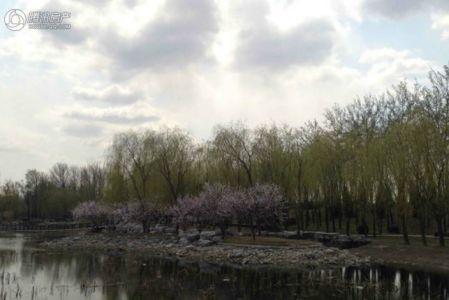 北京商务公园