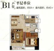 保利翡翠山1室1厅1卫54平方米户型图