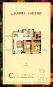 鑫江水青花都3室2厅1卫95--97平方米户型图