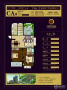 华夏世纪锦园3室2厅2卫116平方米户型图