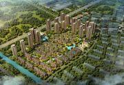枫林天下・康城规划图