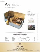 环球金融城1室1厅1卫33平方米户型图