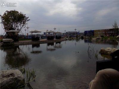 鹭湖国际社区
